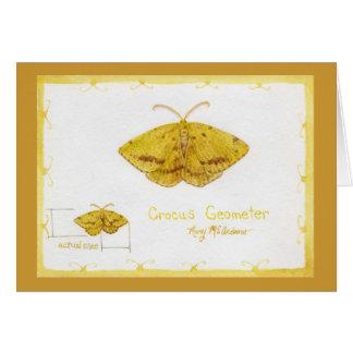 Acuarela de la polilla del geómetra del azafrán tarjeta de felicitación