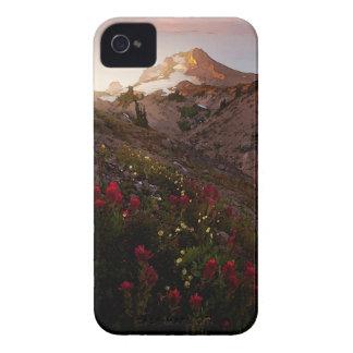 Acuarela de la puesta del sol del valle de la mont Case-Mate iPhone 4 carcasas