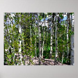 Acuarela de los árboles de abedul en la lona 24x18 impresiones
