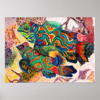 Acuarela de los pescados del mandarín póster