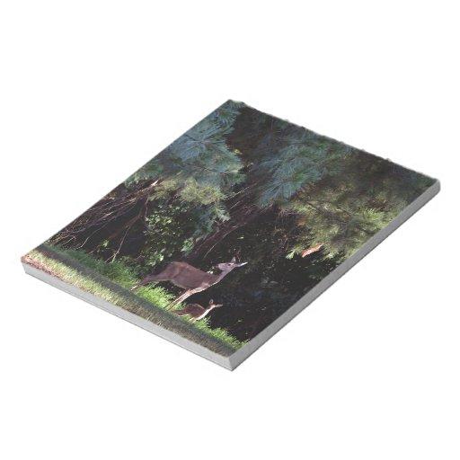 Acuarela de un cervatillo en el bosque blocs de papel
