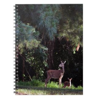 Acuarela de un cervatillo en el bosque libro de apuntes
