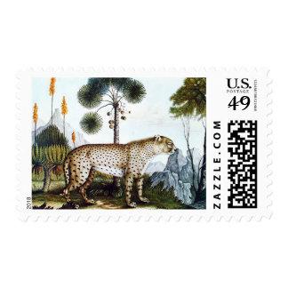 Acuarela de un guepardo (Zotl) Estampilla