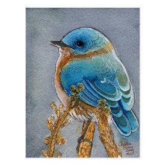 Acuarela del Bluebird Postal