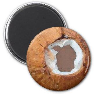 Acuarela del coco - imán