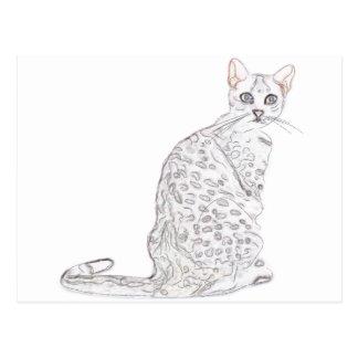 Acuarela del gato de tigre postal