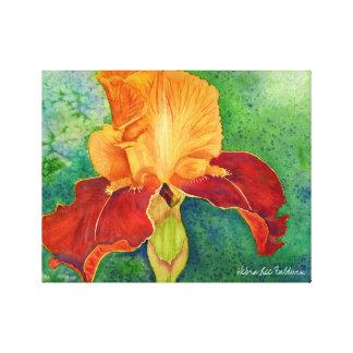 Acuarela del iris de Debra Lee Baldwin Impresión En Lienzo Estirada