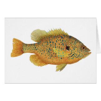 Acuarela del Sunfish de Pumpkinseed Tarjeta De Felicitación