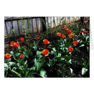 Acuarela del tulipán tarjeta de felicitación