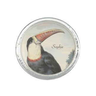 Acuarela del vintage de Toucan del americano de Anillos Con Foto