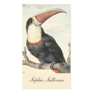 Acuarela del vintage de Toucan del americano de Tarjetas De Visita