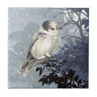 Acuarela gris, arte de la fauna del pájaro de Jay Azulejo Cuadrado Pequeño