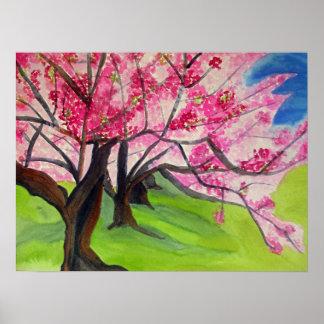 Acuarela japonesa de la flor de cerezo de Sakura Póster