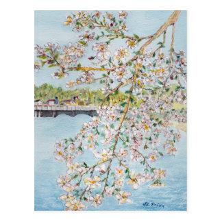 Acuarela Painterly del Washington DC de las flores Tarjeta Postal