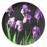 Acuarela púrpura del iris plato