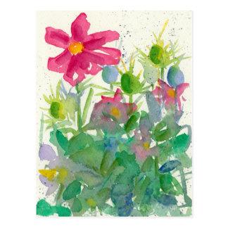 Acuarela rosada del jardín de flores de Nigella Postales