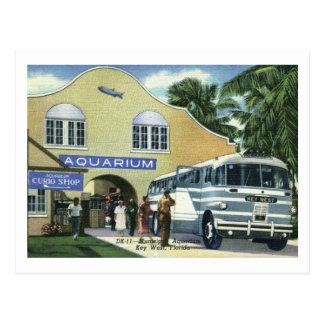Acuario, Key West, vintage de la Florida Tarjetas Postales