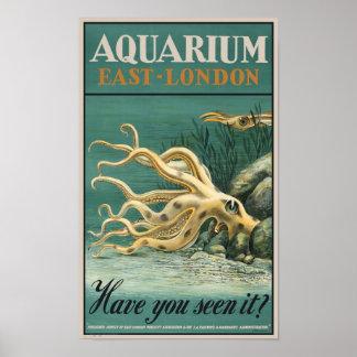 Acuario, pulpo del este de Londres Poster