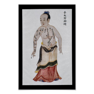 Acupuncture Lung Meridian Hand Taiyin Poster