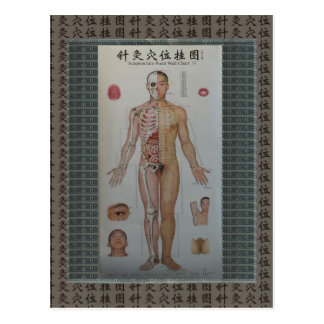 Acupuncture points full body front wall art postcard