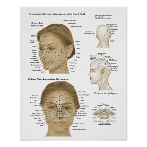 Acupuncture Reflexology Face & Head Microsystems Poster ...