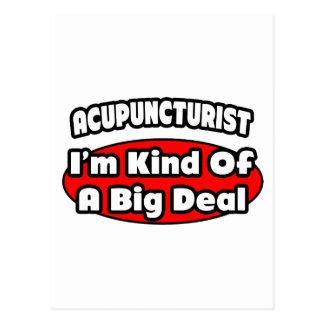 Acupuncturist ... Big Deal Postcard