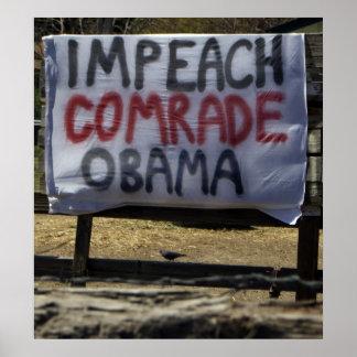 Acuse a camarada Obama, valle de Washoe, Nevada Póster