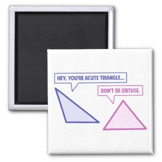 Acute Triangle Obtuse Angle Magnet