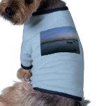 ad2 camisa de perro