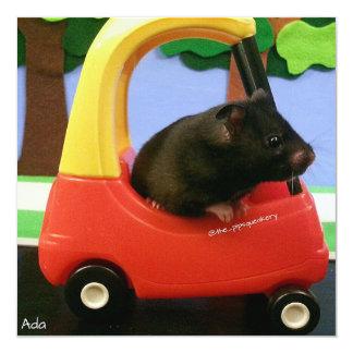 Ada Learns to Drive! Card