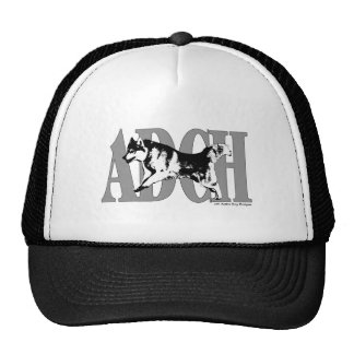 ADCH Sibe Trucker Hat