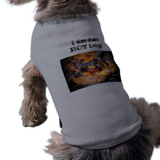 Add a little heat to your dog's winter garb! T-Shirt