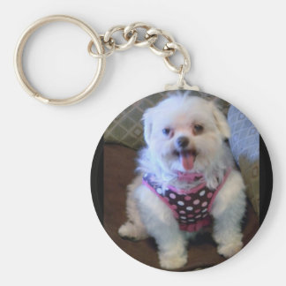 Add a Pet Photo or your Image Keychain