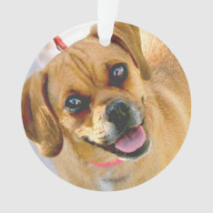 Add A Photo And Any Text On Back Holiday Ornament at Zazzle