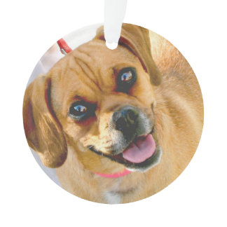 Add A Photo And Any Text On Back Holiday Ornament