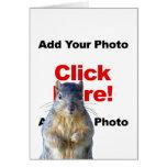 Add A Squirrel Custom Photo Greeting Card