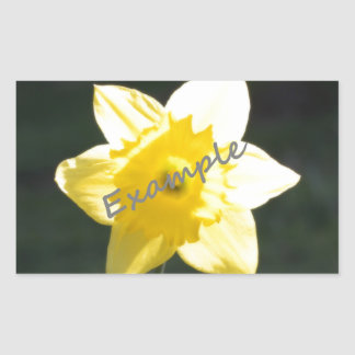 Add Photo to Personalize Your Sticker ! My Picture