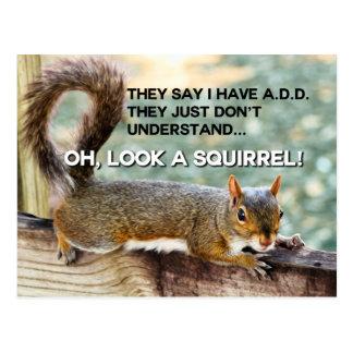 ADD Squirrel Photo Postcard