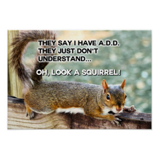 ADD Squirrel Photo Poster