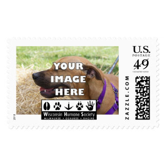 Add Your Animal! Postage Stamp