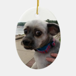 Add your Dog's Photo to this Ornament