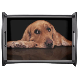 Add your favorite dog photo food trays