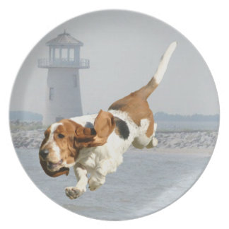 Add Your Pet Lighthouse Plate
