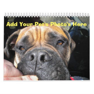 Add your Pet's Photos to Each Month Calendar