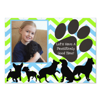 Add Your Photo Pawsitively Good Time Birthday Card