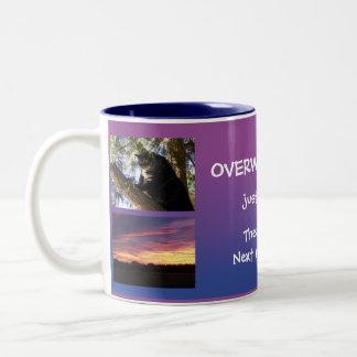 Add your pics insirational message mug 15e