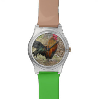 Add YOUR ROOSTER PHOTO Watch Template