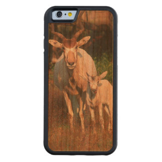 Addax / White Antelope / Screwhorne Antelope Carved Cherry iPhone 6 Bumper Case