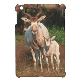 Addax / White Antelope / Screwhorne Antelope Cover For The iPad Mini