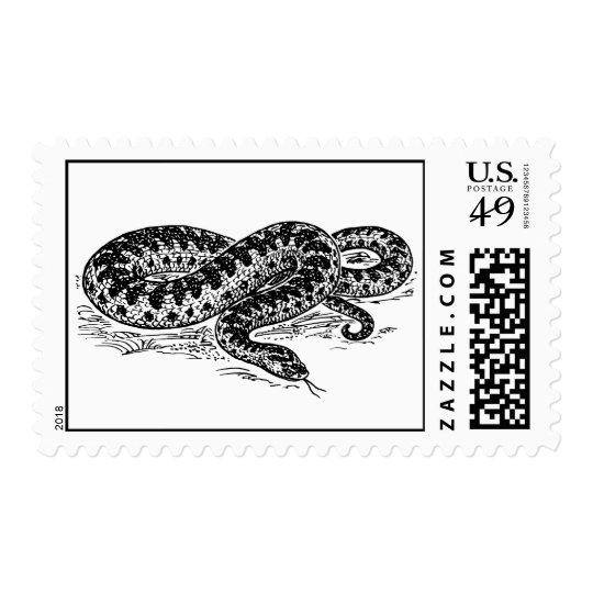 Adder Snake Postage